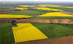 Правовое поле земельного рынка
