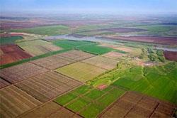 Оренда земельного паю: проблемні аспекти